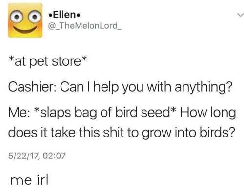 Pet Store: Ellen.  @_TheMelonLord_  *at pet store*  Cashier: Can I help you with anything?  Me: *slaps bag of bird seed* How long  does it take this shit to grow into birds?  5/22/17, 02:07 me irl