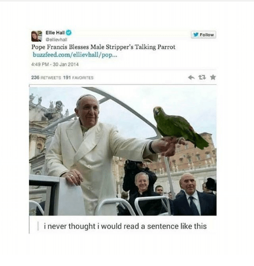 Ironic, Pop, and Pope Francis: Ellie Hall  @ellievha  Follow  Pope Francis Blesses Male Stripper's Talking Parrot  buzzfeed.com/ellievhall/pop...  4:49 PM-30 Jan 2014  236 RETWEETS 191 FAVORITES  i never thought i would read a sentence like this