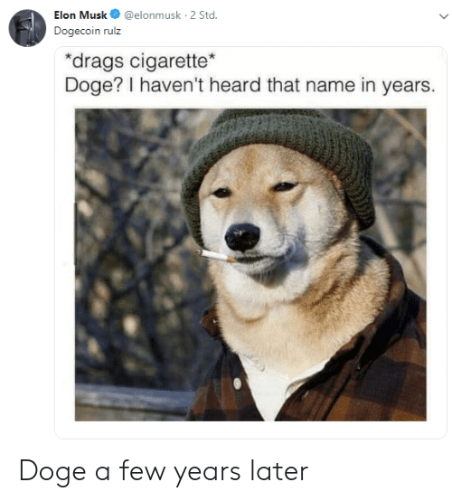 Doge: Elon Musk@elonmusk 2 Std  Dogecoin rulz  drags cigarette  Doge? I haven't heard that name in years. Doge a few years later