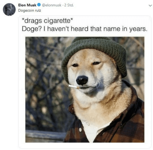 Doge: Elon Musk@elonmusk 2 Std  Dogecoin rulz  drags cigarette  Doge? I haven't heard that name in years.
