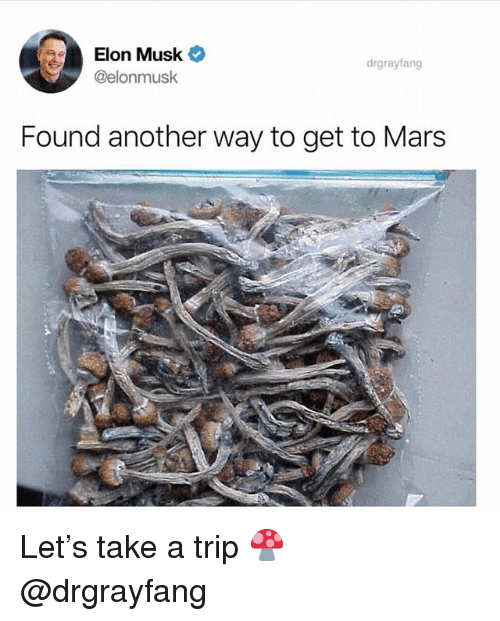 Weed, Marijuana, and Mars: Elon Musk  @elonmusk  drgrayfang  Found another way to get to Mars Let's take a trip 🍄 @drgrayfang