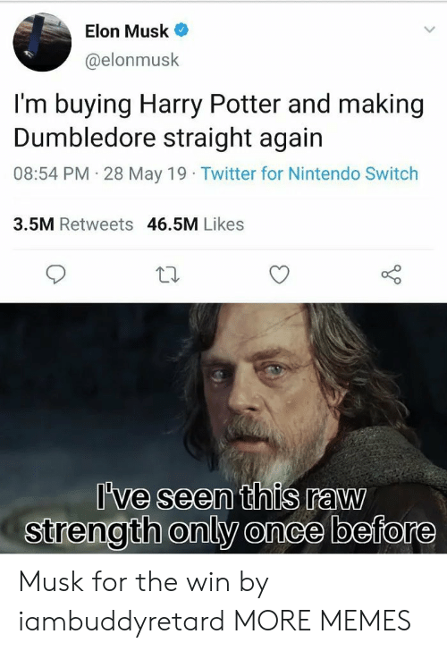 Dumbledore: Elon Musk  @elonmusk  I'm buying Harry Potter and making  Dumbledore straight again  08:54 PM 28 May 19 Twitter for Nintendo Switch  3.5M Retweets 46.5M Likes  've seen this raw  strength only once before Musk for the win by iambuddyretard MORE MEMES
