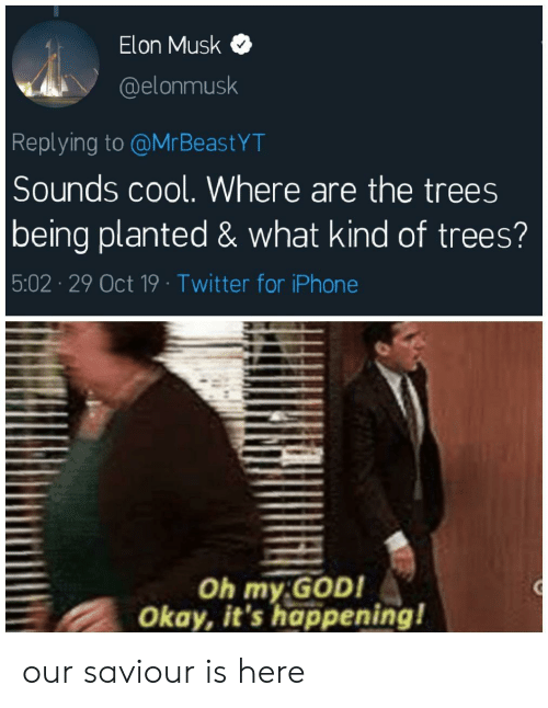 Elonmusk: Elon Musk  @elonmusk  Replying to @MrBeastYT  Sounds cool. Where are the trees  being planted & what kind of trees?  5:02 29 Oct 19 Twitter for iPhone  Oh my GOD!  Okay, it's happening! our saviour is here