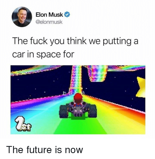 Fuck You, Future, and Fuck: Elon Musk  @elonmusk  The fuck you think we putting a  car in space for The future is now