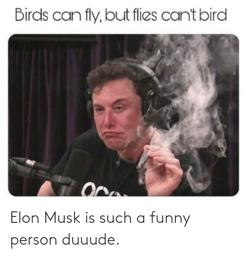 elon musk: Elon Musk is such a funny person duuude.