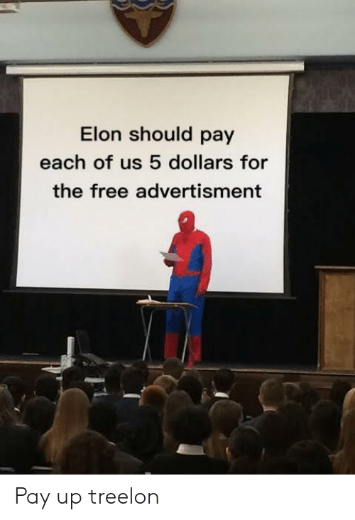 Advertisment: Elon should pay  each of us 5 dollars for  the free advertisment Pay up treelon