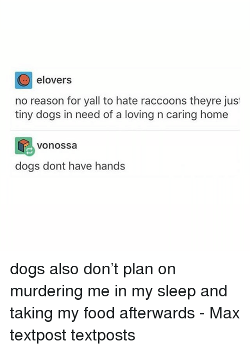 Dogs, Food, and Memes: elovers  no reason for yall to hate raccoons theyre jus  tiny dogs in need of a loving n caring home  vonossa  dogs dont have hands dogs also don't plan on murdering me in my sleep and taking my food afterwards - Max textpost textposts