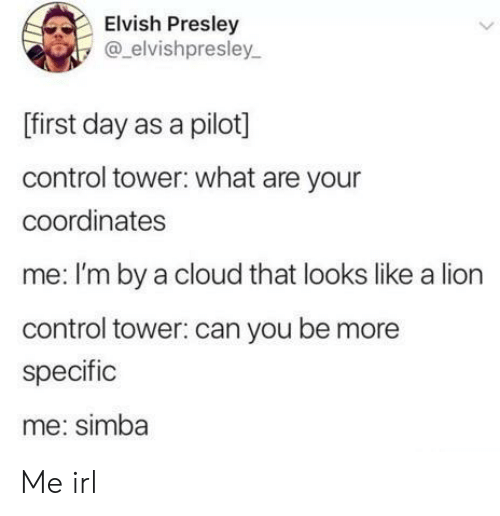 tower: Elvish Presley  @elvishpresley  [first day as a pilot]  control tower: what are your  coordinates  me: I'm by a cloud that looks like a lion  control tower: can you be more  specific  me: simba  > Me irl