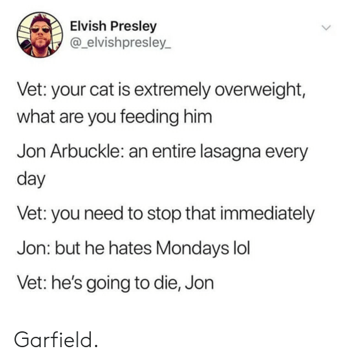 Mondays: Elvish Presley  @_elvishpresley_  Vet: your cat is extremely overweight,  what are you feeding him  Jon Arbuckle: an entire lasagna every  day  Vet: you need to stop that immediately  Jon: but he hates Mondays lol  Vet: he's going to die, Jon Garfield.