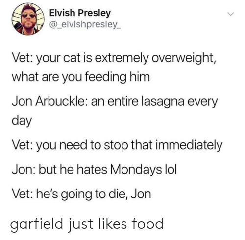 Lasagna: Elvish Presley  @elvishpresley_  Vet: your cat is extremely overweight,  what are you feeding him  Jon Arbuckle: an entire lasagna every  day  Vet: you need to stop that immediately  Jon: but he hates Mondays lol  Vet: he's going to die, Jon garfield just likes food