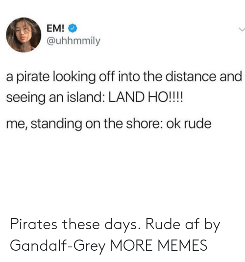 Gandalf: EM!  @uhhmmily  a pirate looking off into the distance and  seeing an island: LAND HO!!!!  me, standing on the shore: ok rude Pirates these days. Rude af by Gandalf-Grey MORE MEMES
