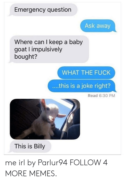 Baby Goat: Emergency question  Ask away  Where can I keep a baby  goat I impulsively  bought?  WHAT THE FUCK  ..this is a joke right?  Read 6:30 PM  This is Billy me irl by Parlur94 FOLLOW 4 MORE MEMES.