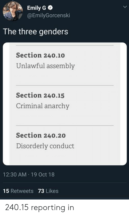 Emily: Emily G  @EmilyGorcenski  The three genders  Section 240.10  Unlawful assembly  Section 240.15  Criminal anarchy  Section 240.20  Disorderly conduct  12:30 AM 19 Oct 18  15 Retweets 73 Likes 240.15 reporting in