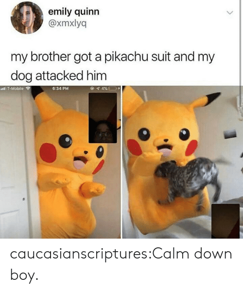 Emily: emily quinn  @xmxlyq  my brother got a pikachu suit and my  dog attacked him  IT-Mobile  6:34 PM caucasianscriptures:Calm down boy.