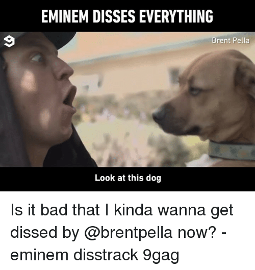Dissed: EMINEM DISSES EVERYTHING  Brent Pella  Look at this dog Is it bad that I kinda wanna get dissed by @brentpella now? - eminem disstrack 9gag