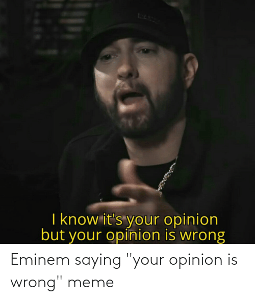 "Wrong Meme: Eminem saying ""your opinion is wrong"" meme"