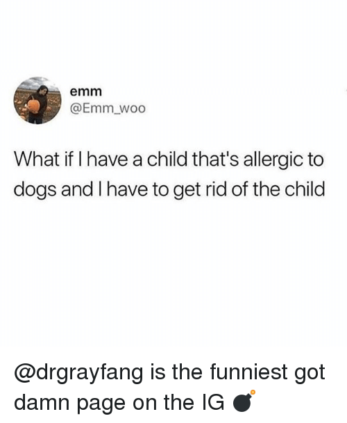 Dogs, Funny, and Got: emm  @Emm_woo  What if I have a child that's allergic to  dogs and I have to get rid of the child @drgrayfang is the funniest got damn page on the IG 💣