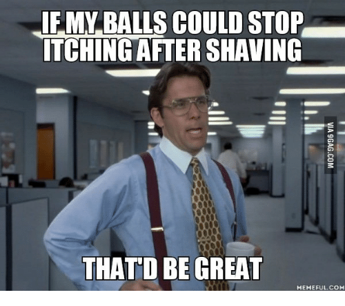 Thatd Be Great Meme: EMMABALLS COULD STOP  ITCHING AFTER SHAVING  THATD BE GREAT  MEME FUL.COM