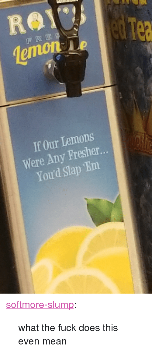 "Tumblr, Blog, and Fuck: emon  If Our Lemons  Were Any Fresher.  You'd Slap Em <p><a href=""http://softmore-slump.tumblr.com/post/169410249343/what-the-fuck-does-this-even-mean"" class=""tumblr_blog"">softmore-slump</a>:</p> <blockquote><p>what the fuck does this even mean</p></blockquote>"