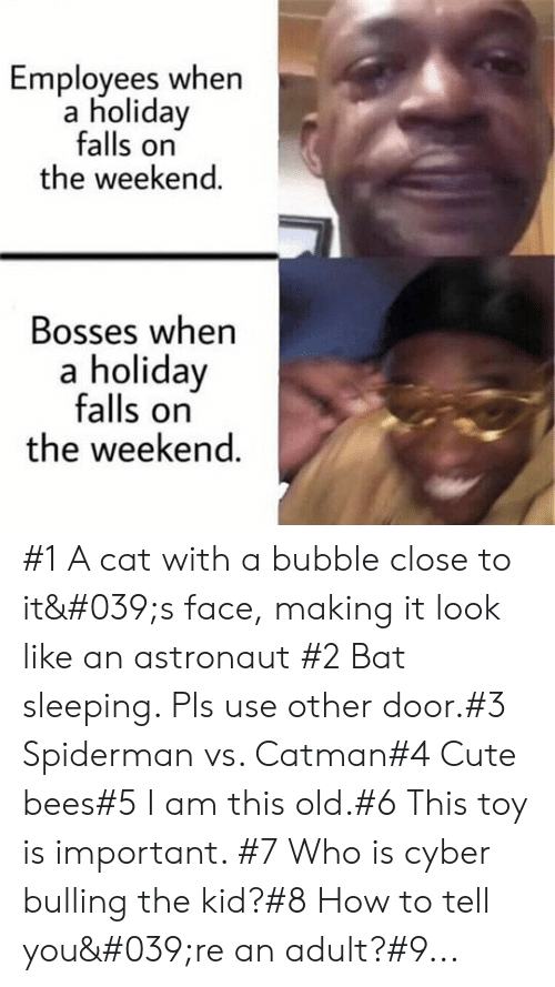 the kid: Employees when  a holiday  falls on  the weekend.  Bosses when  a holiday  falls on  the weekend. #1 A cat with a bubble close to it's face, making it look like an astronaut #2 Bat sleeping. Pls use other door.#3 Spiderman vs. Catman#4 Cute bees#5 I am this old.#6 This toy is important. #7 Who is cyber bulling the kid?#8 How to tell you're an adult?#9...