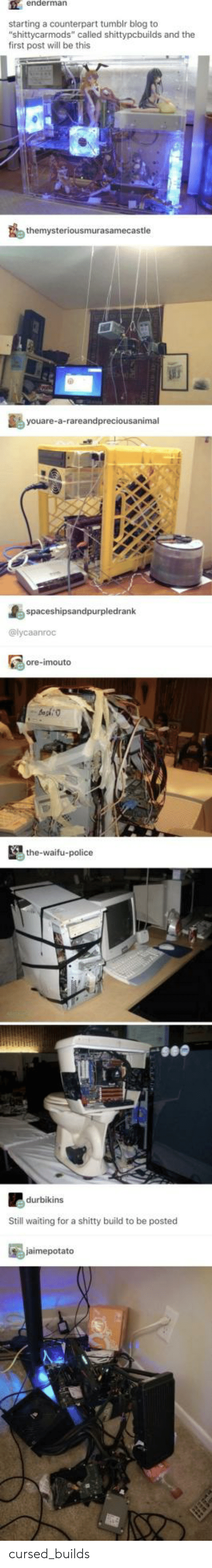 """Waifu: enderman  starting a counterpart tumblr blog to  """"shittycarmods"""" called shittypcbuilds and the  first post will be this  themysteriousmurasamecastle  youare-a-rareandpreciousanimal  spaceshipsandpurpledrank  @lycaanroc  ore-imouto  the-waifu-police  durbikins  Still waiting for a shitty build to be posted  jaimepotato cursed_builds"""
