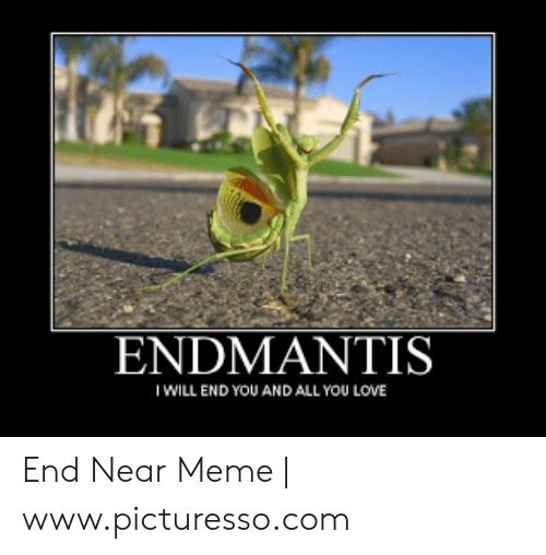 Love, Meme, and Com: ENDMANTIS  I WILL END YOU AND ALL YOU LOVE End Near Meme | www.picturesso.com
