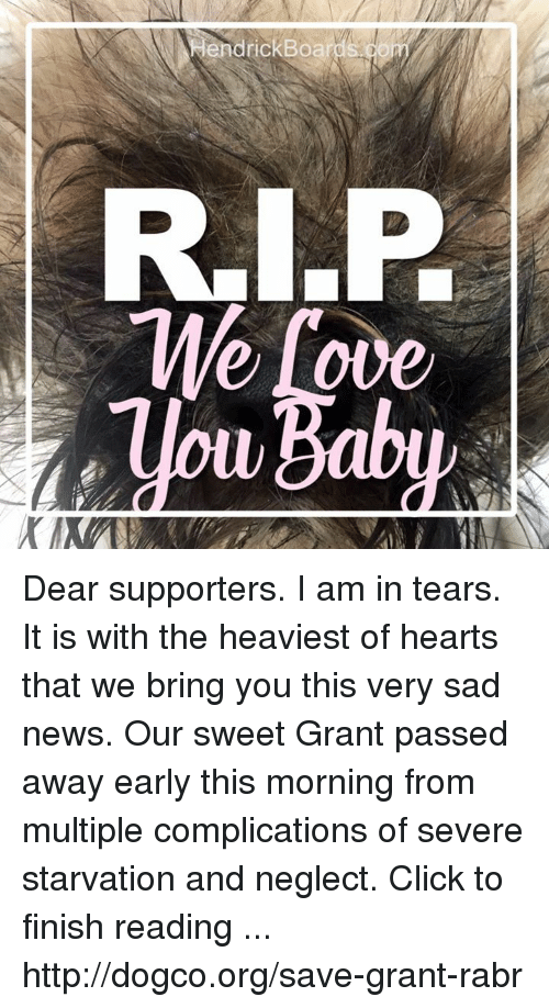 Click, Love, and Memes: endrickBoa  Me Love Dear supporters. I am in tears. It is with the heaviest of hearts that we bring you this very sad news.  Our sweet Grant passed away early this morning from multiple complications of severe starvation and neglect.  Click to finish reading ... http://dogco.org/save-grant-rabr