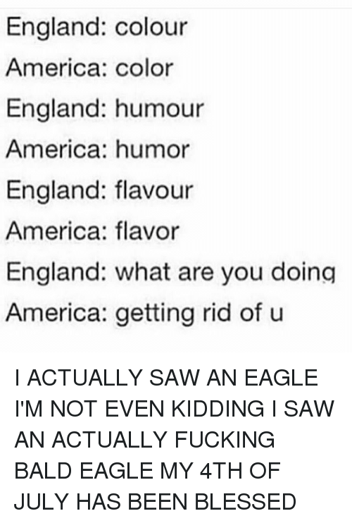 America, Blessed, and England: England: colour  America: color  England: humour  America: humor  England: flavour  America: flavor  England: what are you doing  America: getting rid of u I ACTUALLY SAW AN EAGLE I'M NOT EVEN KIDDING I SAW AN ACTUALLY FUCKING BALD EAGLE MY 4TH OF JULY HAS BEEN BLESSED