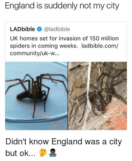 Community, England, and Spiders: England is suddenly not my city  LADbible @ladbible  UK homes set for invasion of 150 milliorn  spiders in coming weeks. ladbible.com/  community/uk-w... Didn't know England was a city but ok... 🤔🤷🏿♂️