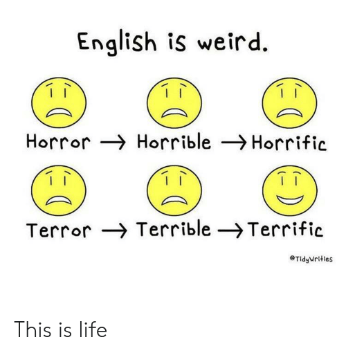 Is Life: English is weird  Horror Horrible Horrific  Terror Terrible -Terrific  TidyWrities This is life