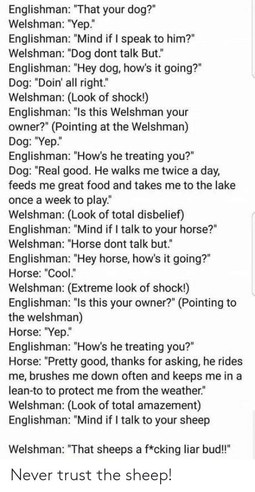 "sheeps: Englishman: ""That your dog?""  Welshman: ""Yep.""  Englishman: ""Mind if I speak to him?""  Welshman: ""Dog dont talk But.""  Englishman: ""Hey dog, how's it going?""  Dog: ""Doin' all right.""  Welshman: (Look of shock!)  Englishman: ""ls this Welshman your  owner?"" (Pointing at the Welshman)  Dog: ""Yep.  Englishman: ""How's he treating you?""  Dog: ""Real good. He walks me twice a day,  feeds me great food and takes me to the lake  once a week to play.  Welshman: (Look of total disbelief)  Englishman: ""Mind if I talk to your horse?""  Welshman: ""Horse dont talk but.""  Englishman: ""Hey horse, how's it going?""  Horse: ""Cool.""  Welshman: (Extreme look of shock!)  Englishman: ""ls this your owner?"" (Pointing to  the welshman)  Horse: ""Yep""  Englishman: ""How's he treating you?""  Horse: ""Pretty good, thanks for asking, he rides  me, brushes me down often and keeps me in a  lean-to to protect me from the weather.  Welshman: (Look of total amazement)  Englishman: ""Mind if I talk to your sheep  Welshman: ""That sheeps a f*cking liar bud!"" Never trust the sheep!"
