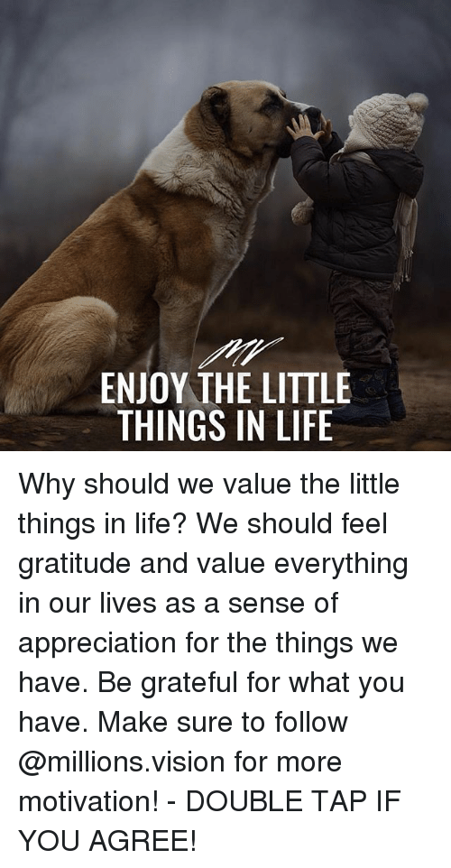 Life, Memes, and Vision: ENJOY THE LITTLE  THINGS IN LIFE Why should we value the little things in life? We should feel gratitude and value everything in our lives as a sense of appreciation for the things we have. Be grateful for what you have. Make sure to follow @millions.vision for more motivation! - DOUBLE TAP IF YOU AGREE!