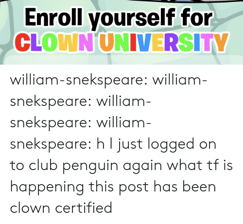 club penguin: Enroll yourself for  CLOWN UNIVERSITY william-snekspeare: william-snekspeare:  william-snekspeare:  william-snekspeare: h I just logged on to club penguin again what tf is happening   this post has been clown certified