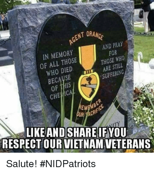 Memes, Respect, and Vietnam: ENT ORAM  IN MEMORY  OF ALL THOSE  WHO DIED  AND PRAY  FOR  THOSE WHO  ARE STILL  SUFFERING  CHE ICAL  EM  ACR  LIKEAND SHARE IF YOU  RESPECT OUR VIETNAM VETERANS Salute! #NIDPatriots