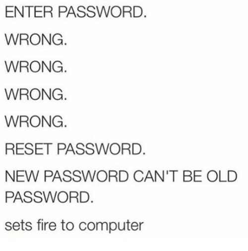 Reseted: ENTER PASSWORD.  WRONG  WRONG.  WRONG.  WRONG.  RESET PASSWORD.  NEW PASSWORD CAN'T BE OLD  PASSWORD.  sets fire to computer