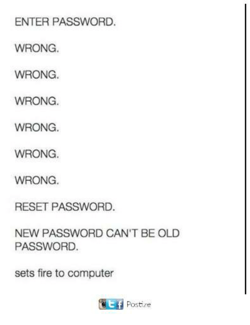Reseted: ENTER PASSWORD  WRONG.  WRONG.  WRONG.  WRONG  WRONG.  WRONG  RESET PASSWORD.  NEW PASSWORD CAN'T BE OLD  PASSWORD  sets fire to computer  Postize