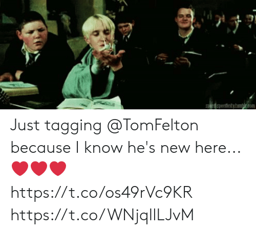 Tagging: enticitytumplr.com Just tagging @TomFelton because I know he's new here...❤️❤️❤️ https://t.co/os49rVc9KR https://t.co/WNjqIlLJvM