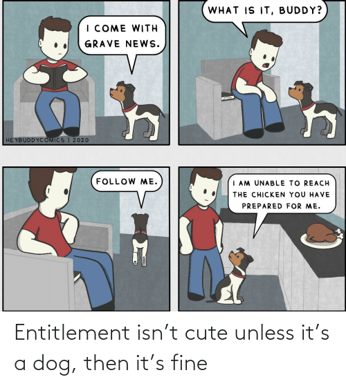 entitlement: Entitlement isn't cute unless it's a dog, then it's fine