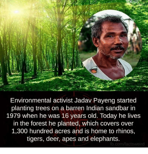 barren: Environmental activist Jadav Payeng started  planting trees on a barren Indian sandbar in  1979 when he was 16 years old. Today he lives  in the forest he planted, which covers over  1,300 hundred acres and is home to rhinos,  tigers, deer, apes and elephants  fb.com/factsweird
