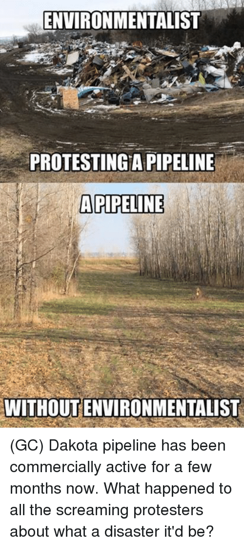 Memes, All The, and Been: ENVIRONMENTALIST  PROTESTINGA PIPELINE  APIPELINE  WITHOUT ENVIRONMENTALIST (GC) Dakota pipeline has been commercially active for a few months now. What happened to all the screaming protesters about what a disaster it'd be?