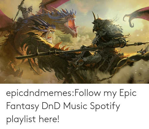 DnD: epicdndmemes:Follow my Epic Fantasy DnD Music Spotify playlist here!