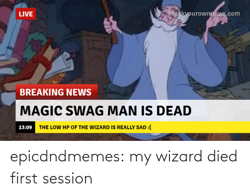 wizard: epicdndmemes:  my wizard died first session