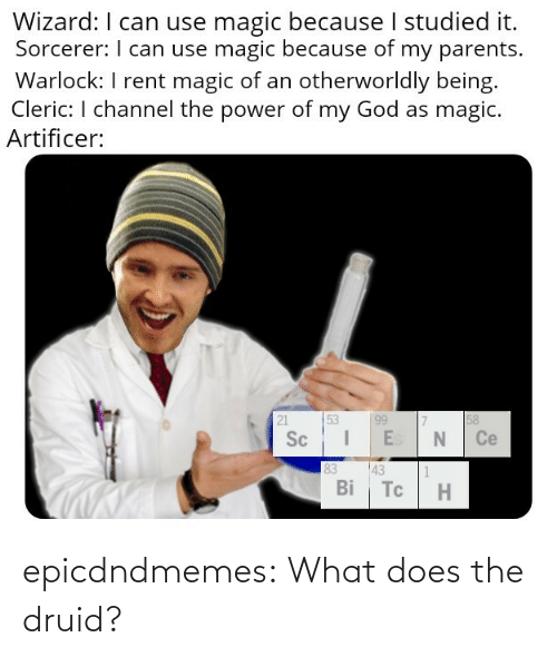 What Does: epicdndmemes:  What does the druid?