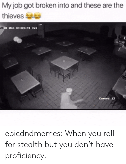 stealth: epicdndmemes:  When you roll for stealth but you don't have proficiency.