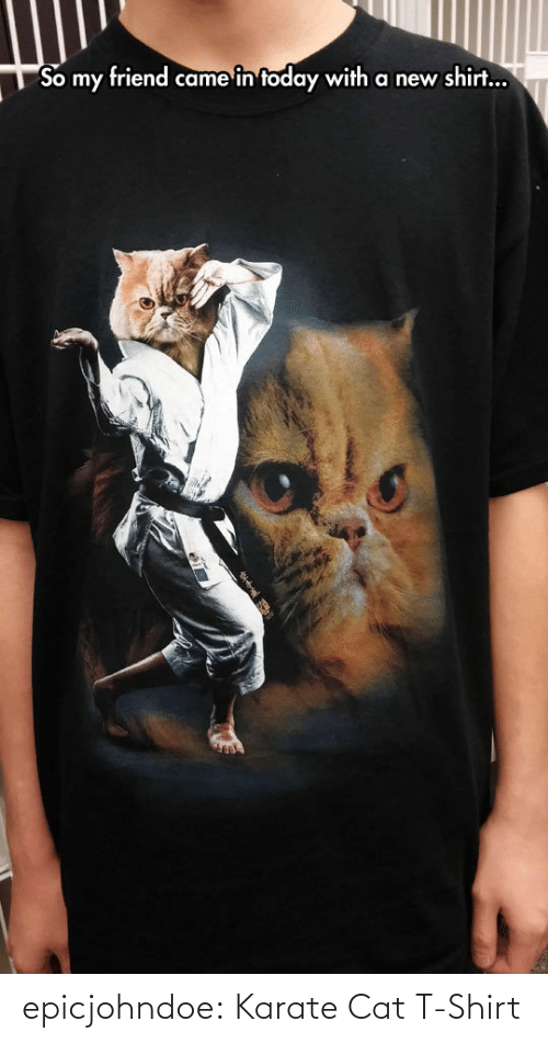 t-shirt: epicjohndoe:  Karate Cat T-Shirt