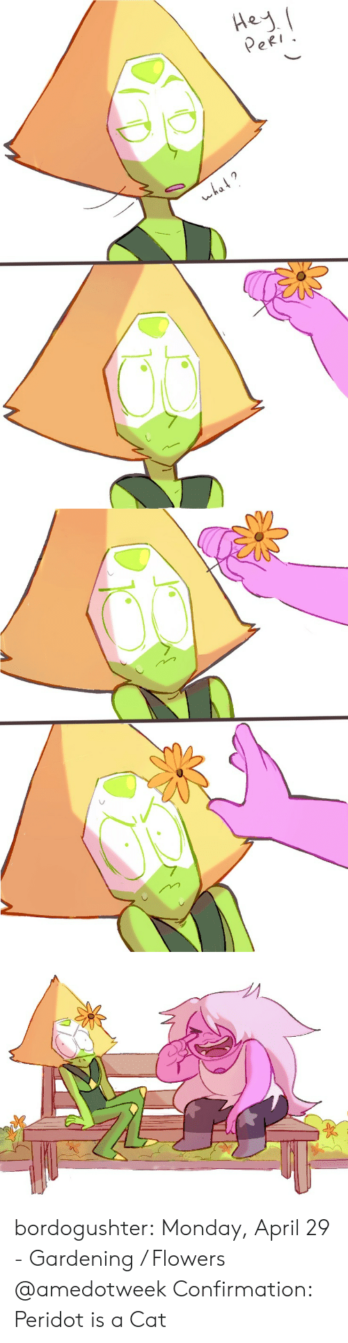 Gardening: eRI  wha bordogushter:    Monday, April 29 - Gardening / Flowers  @amedotweek  Confirmation: Peridot is a Cat