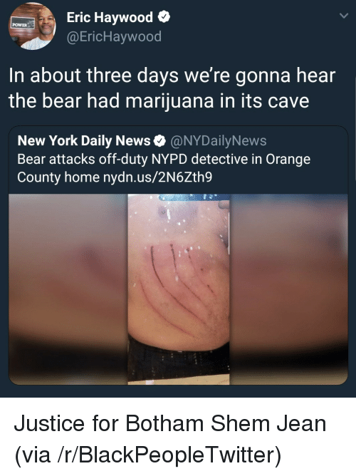 Blackpeopletwitter, New York, and News: Eric Haywood o  @EricHaywood  POWER  In about three days we're gonna hear  the bear had marijuana in its cave  New York Daily News Ф @NYDailyNews  Bear attacks off-duty NYPD detective in Orange  County home nydn.us/2N6Zth9 Justice for Botham Shem Jean (via /r/BlackPeopleTwitter)