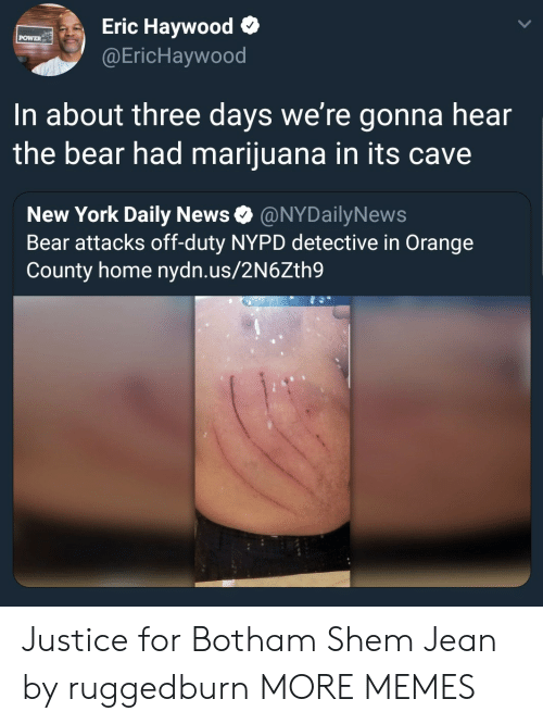 daily news: Eric Haywood o  @EricHaywood  POWER  In about three days we're gonna hear  the bear had marijuana in its cave  New York Daily News Ф @NYDailyNews  Bear attacks off-duty NYPD detective in Orange  County home nydn.us/2N6Zth9 Justice for Botham Shem Jean by ruggedburn MORE MEMES