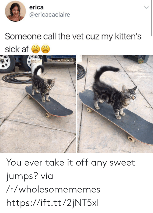 Erica: erica  @ericacaclaire  Someone call the vet cuz my kitten's  sick af You ever take it off any sweet jumps? via /r/wholesomememes https://ift.tt/2jNT5xI