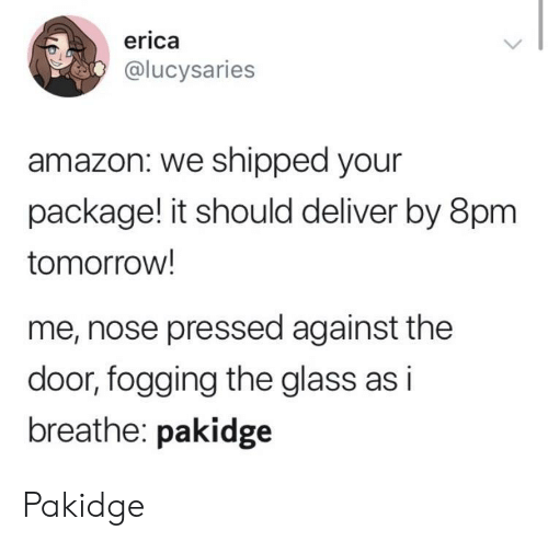 Erica: erica  @lucysaries  amazon: we shipped your  package! it should deliver by 8pm  tomorrow!  me, nose pressed against the  door, fogging the glass as i  breathe: pakidge Pakidge